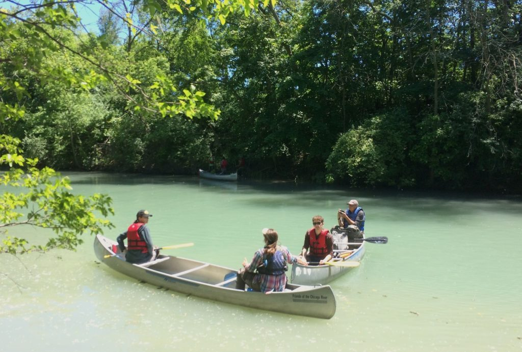 Planting by canoe with Friends of the Chicago River