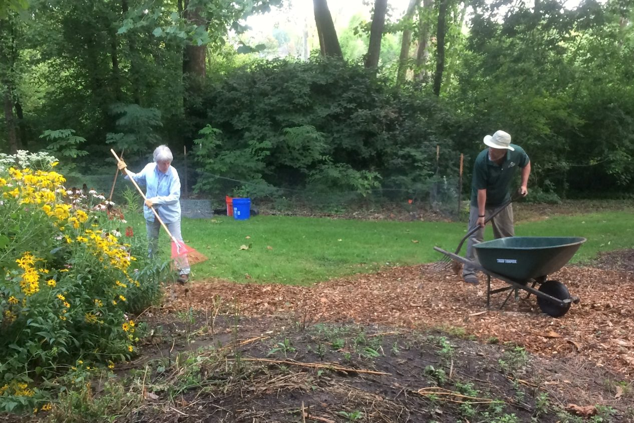 Teamwork - Sheila and Tom raking mulch in the arboretum