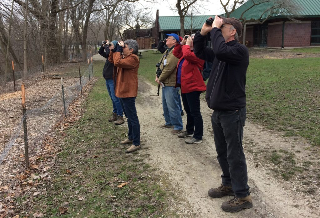 Bird watching along the channel with Judy Pollock