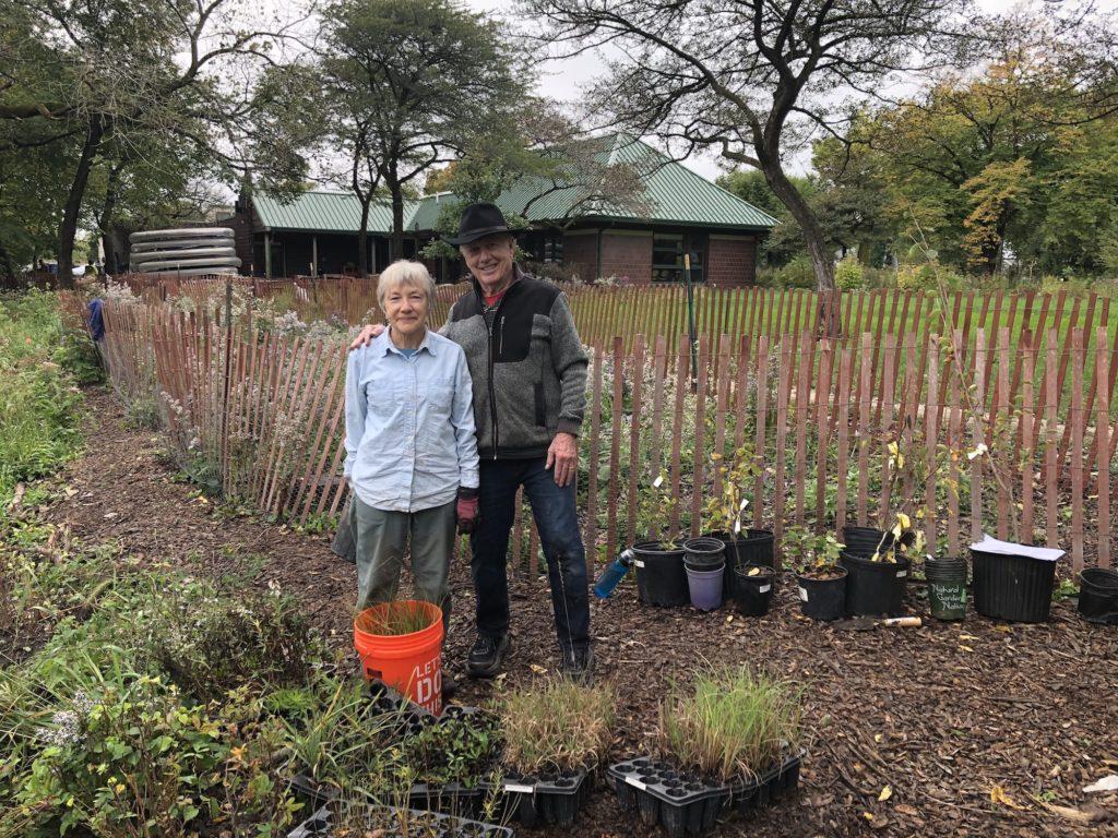 Planting wildflower plugs at the Ladd Arboretum
